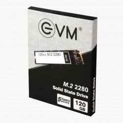 EVM 120GB M.2 2280 SOLID STATE DRIVE (SSD)