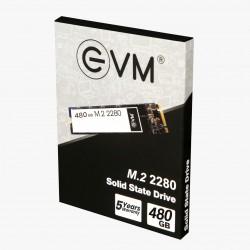 EVM 480GB M.2 2280 SOLID STATE DRIVE (SSD)