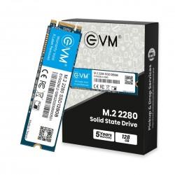 EVM 128GB M.2 2280 SOLID STATE DRIVE (SSD)