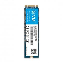 EVM 1 TB M.2 2280 SOLID STATE DRIVE (SSD)