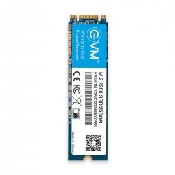 EVM 256GB M.2 2280 SOLID STATE DRIVE (SSD)