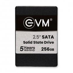 """EVM 256GB 2.5"""" SATA SOLID STATE DRIVE (SSD)"""