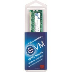 EVM 1GB DDR2 RAM